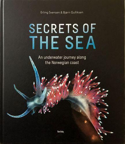 Secrets of the sea. An underwater journey along the Norwegian coast