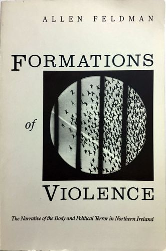 Formations of Violence. The Narrative of the Body and Political Terror in Northern Ireland